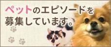 ペットのエピソード募集フォーム